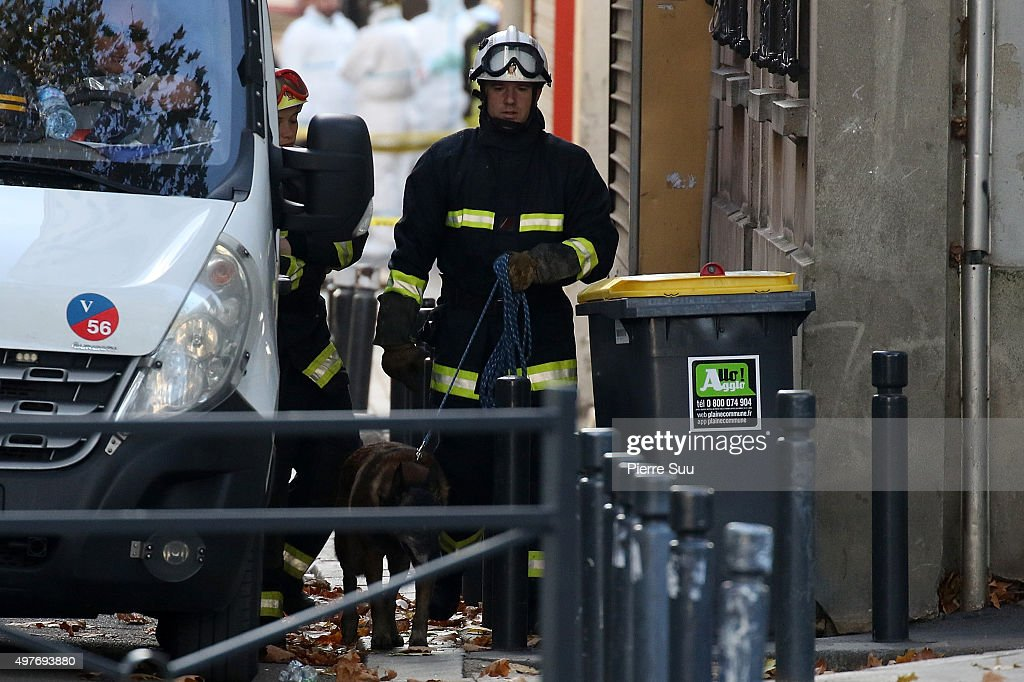 A member of the K9 squad and his dog work on Rue des Corbillon in the northern Paris suburb of SaintDenis following a raid on an apartment on...