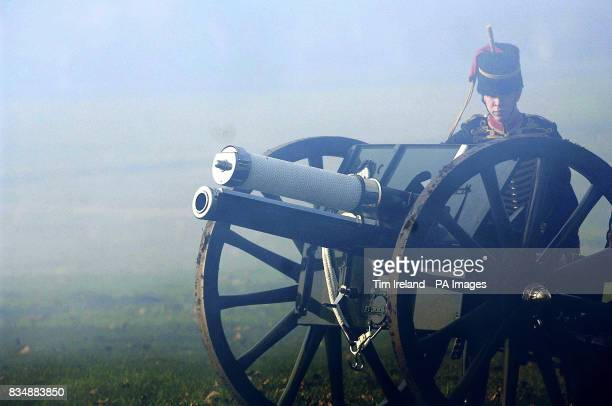 A member of the King's Troop Royal Horse Artillery takes part in a 41Gun Salute in London's Hyde Park to mark the 60th birthday of the Prince of Wales