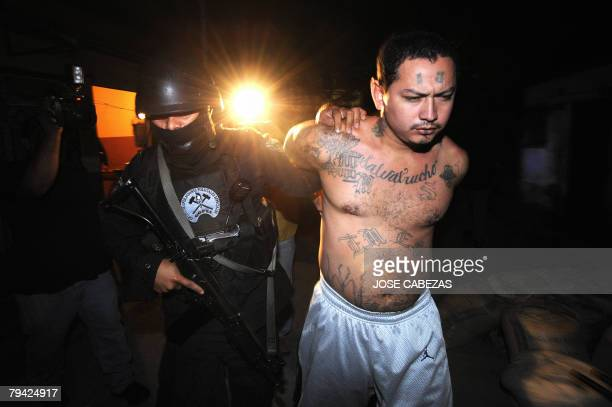 A member of the National Civil Police elite forces secures an alleged member of the MS13 gang during a raid in the San Rafael community in Santa...
