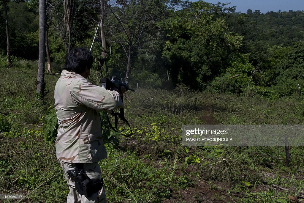 A member of the Paraguayan SENAD (Antidrug National Agency) fires his weapon upon arriving at a marijuana plantation in Pedro Juan Caballero (in the border with Brazil) 550 km northeast of Asuncion on April 19, 2013. AFP PHOTO/Pablo PORCIUNCULA