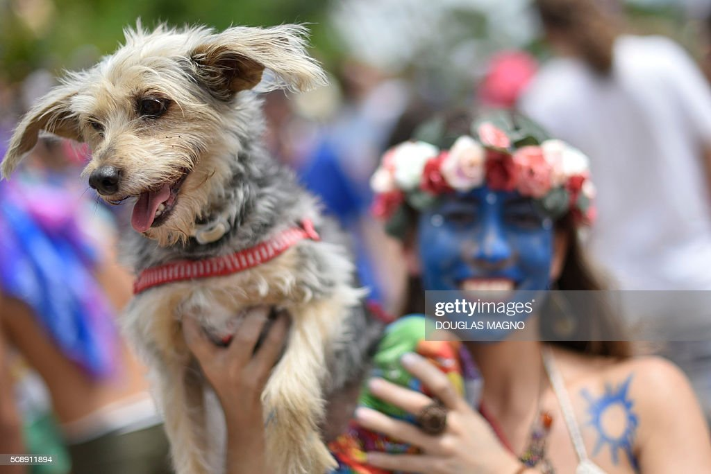 A member of the PPK block (Krishna Peacock Feather) holds a dog as she takes part in a carnival parade at Jardim dos Pirineus neighbourhood, in Belo Horizonte, Brazil, on February 7, 2016. The Krishna Peacock Feather is inspired in Indian culture. AFP PHOTO / Douglas MAGNO / AFP / Douglas Magno