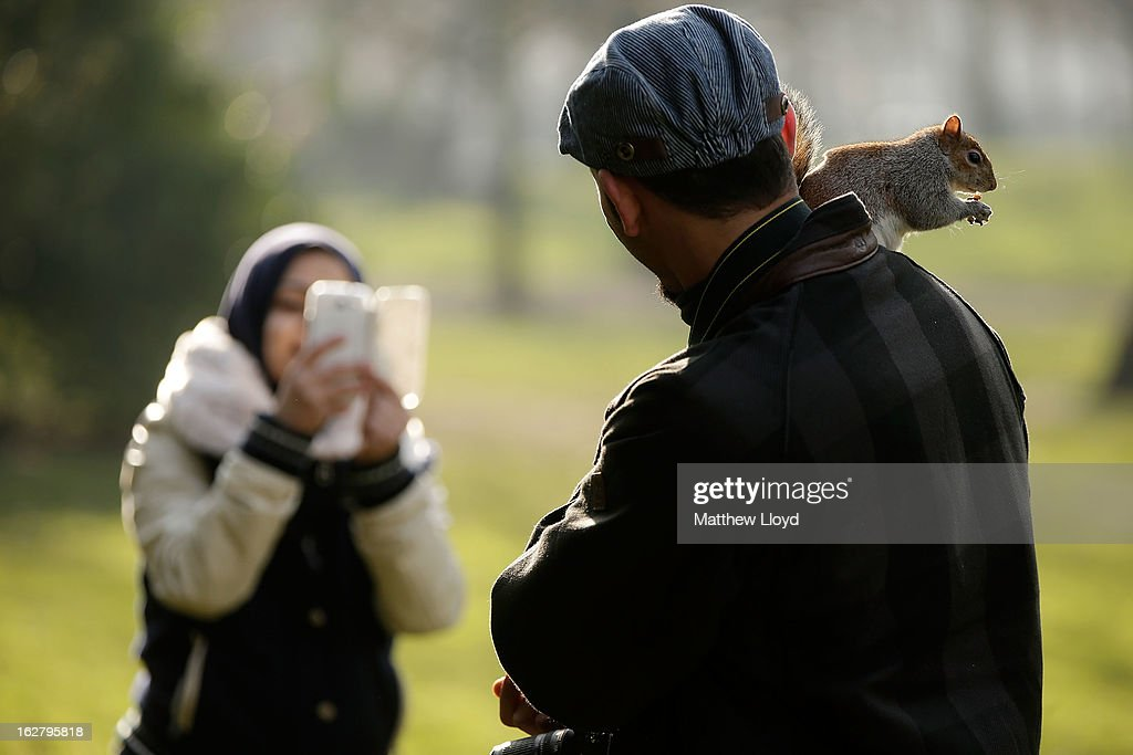 A member of the public takes a photograph as a squirrel climbs on a man in St James' Park on February 27, 2013 in London, England. The Met Office has predicted a cold period at Easter.