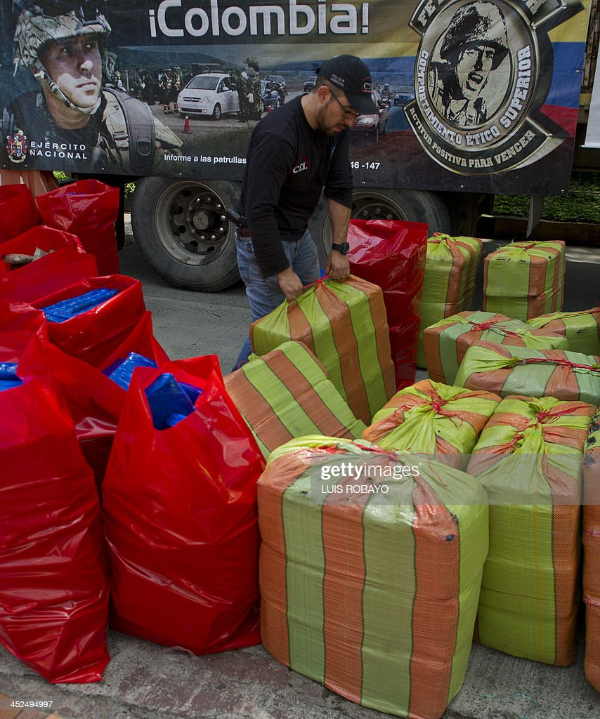 A member of the Technical Investigation Unit (CTI) picks up packages of seized marijuana displayed to the press, on November 29, 2013, in Cali, department of Valle del Cauca, Colombia. Authorities reported the finding of 3,6 tons of marijuana inside a truck coming from the Cauca Department that was intercepted in the rural zone of the municipality of Candelaria. AFP PHOTO/Luis ROBAYO