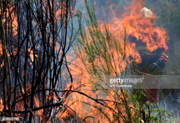 A member of the UME fights a wildfire behind flames in Vilardevos northwestern Spain on August 4 2017 / AFP PHOTO / MIGUEL RIOPA