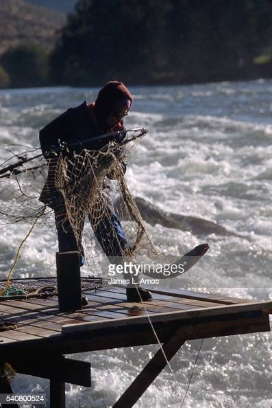 A member of the Warm Springs tribe pulls a fish from the Deschutes River from a platform over the river by Celio Falls in central Oregon | Location...