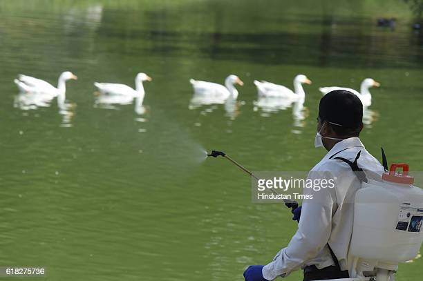 RRT member sprays to sanitize the area in front of bird enclosure as Shakti Sthal Lake is shut down temporarily amid bird flu near Samadhi of former...