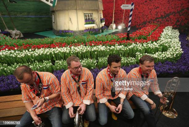 Members of a brass band take a break while sitting next to Dutch tulips and other flowers at the Holland stand at the 2013 Gruene Woche agricultural...