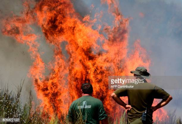 Members of a firefighting brigade stand close to a wildfire in Vilardevos next to Verin northwestern Spain on August 4 2017 / AFP PHOTO / MIGUEL RIOPA
