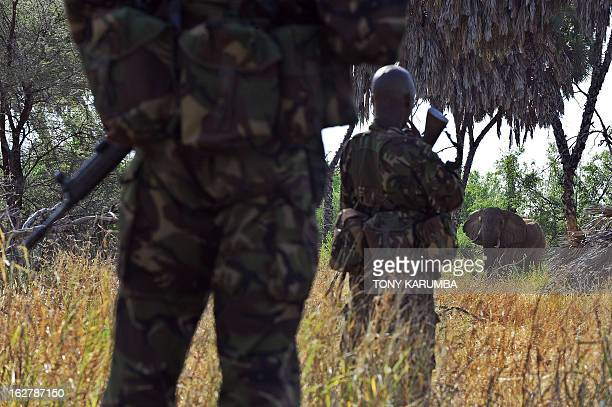 Members of an elite antipoaching unit watch over an elephant bull on February 4 2013 at the Laikipia conservancy approximately 250 kms north of the...