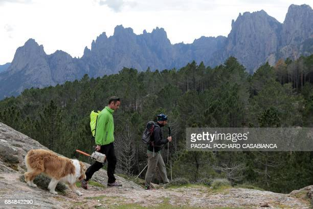 Members of Corsica's Regional Nature Park and in charge of the GR20 trek Jean Antonelli and Benoit Vesperini walk in the Bavella Mountains on the...