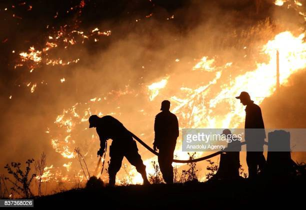 Members of fire department try to extinguish the wildfire in Daba and Tsagveri villages of Tbilisi's Borjomi Valley Georgia on August 22 2017 Turkey...