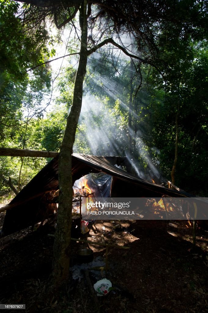 Members of Paraguayan SENAD (Antidrug National Agency) set on fire a marijuana grower's improvised camp into the woods in Pedro Juan Caballero (border with Brazil) 550 km northeast of Asuncion on April 19, 2013. AFP PHOTO/Pablo PORCIUNCULA
