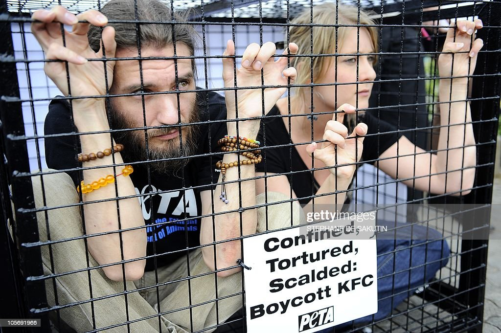 Members of People for the Ethical Treatment of Animals are confined to a cage outside a KFC restaurant on October 19 2010 in Johannesburg to protest...