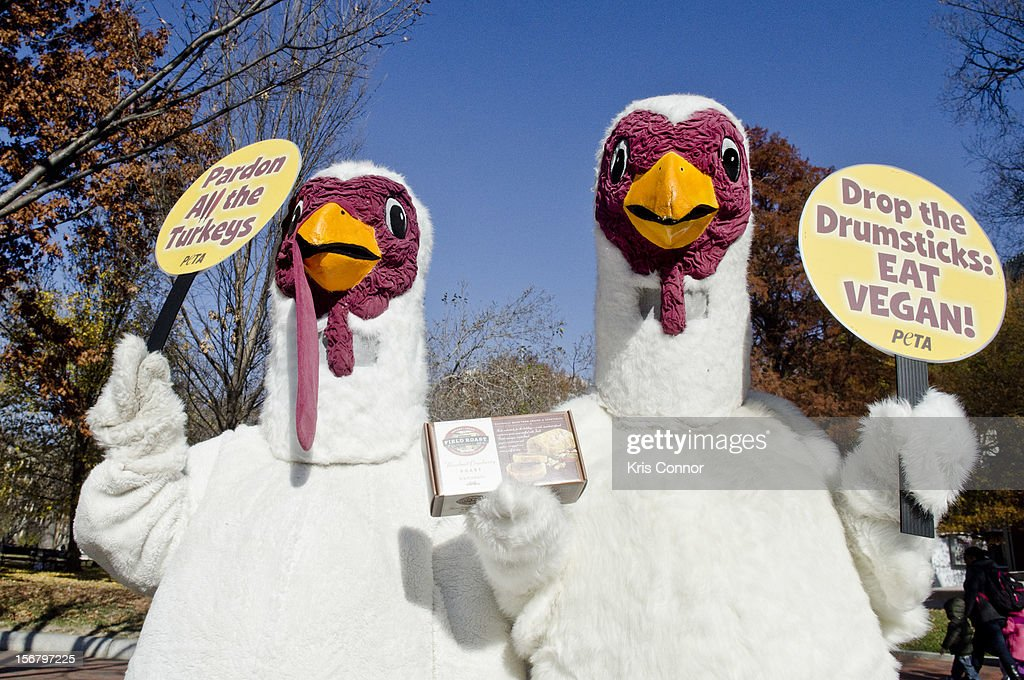 Members of PETA promote a meat free holiday season at the White House on November 21, 2012 in Washington, DC.