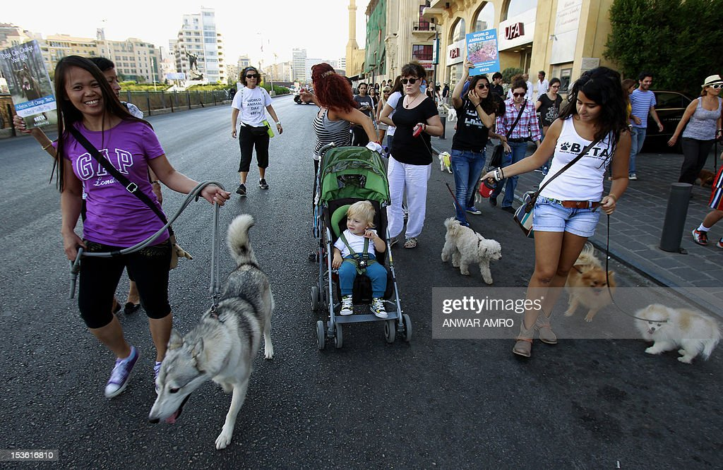 Members of the Beirut for the Ethical Treatment of Animals (BETA) charitable organisation carry their pets during a demonstrates in Beirut on October 7, 2012, calling to stop the abuse against animals and demanding the Lebanese authorities to guarantee the ethical treatment.
