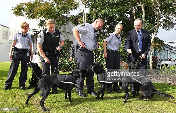 Members of the Biosecurity dog handling team at the graduation of detector dogs at Auckland International Airport on July 20 2012 in Auckland New...