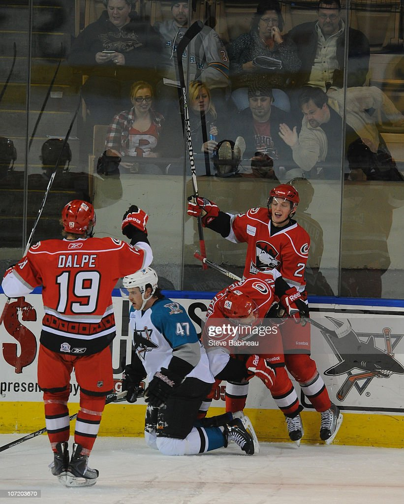 Members of the Charlotte Checkers celebrate a goal against the Worcester Sharks at the DCU Center on November 27, 2010 in Worcester Massachusetts.