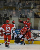 Members of the Charlotte Checkers celebrate a goal against the Worcester Sharks at the DCU Center on November 27 2010 in Worcester Massachusetts