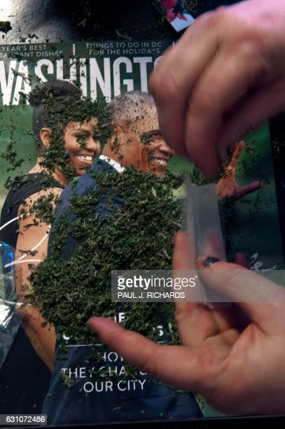 A Members of the DC Marijuana Coalition that plan on handing out approximately 4200 joints of legally grown cannabis on January 20 prepares a joint...