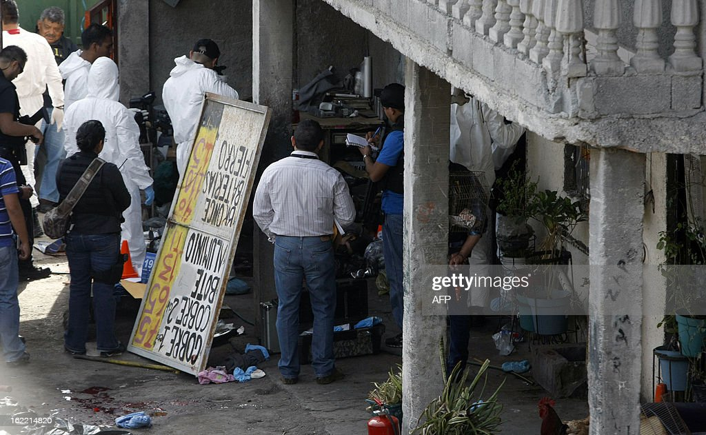 Members of the Federal Police escort forensic personnel as they inspect six corpses in the west side of Monterrey, Nuevo Leon state, Mexico on February 20, 2013. Three men, a woman and two children were found killed.