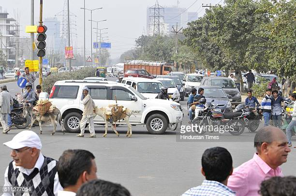 Members of the Jat community protest at Bakhtawar Chowk for reservations in government services on February 19 2016 in Gurgaon India They blocked...