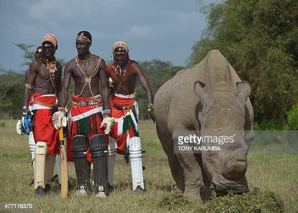 Members of the Maasai Cricket Warriors a cricket team famed for using the sport to raise awareness for HIV/AIDS and women's issues are now playing to...