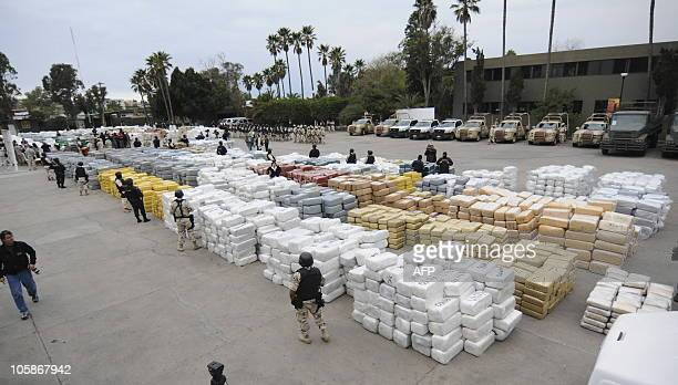 Members of the Mexican Federal Police guard over 105 tonnes of marijuana on October 18 2010 in the border town of Tijuana Mexico seized after a clash...