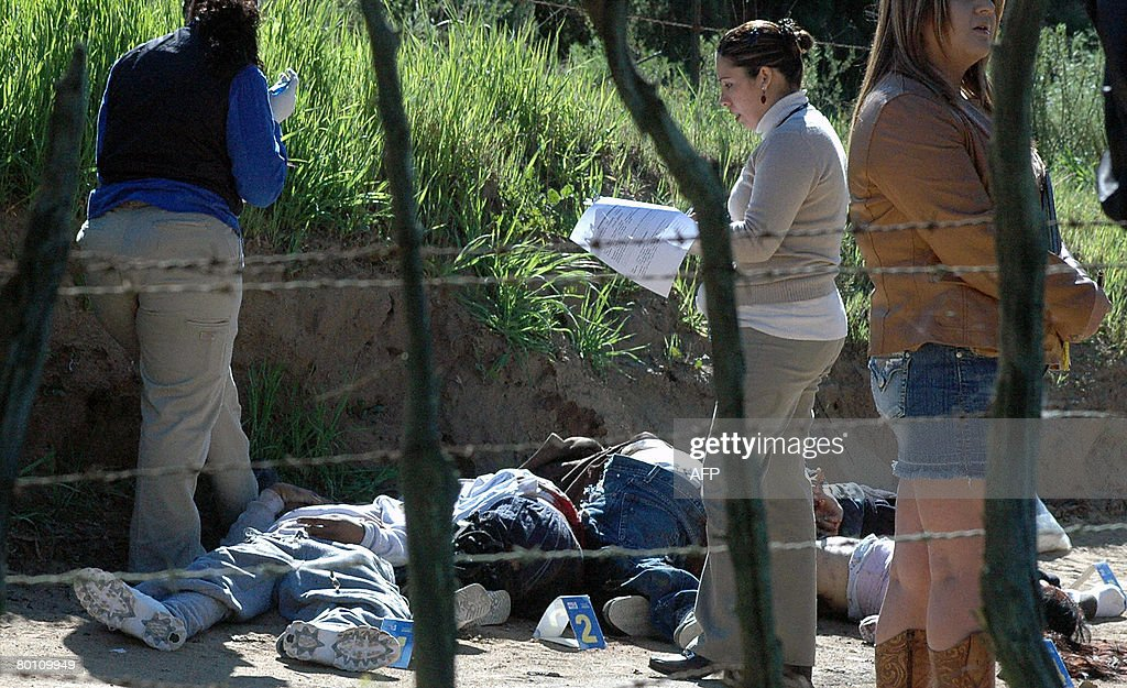 Members of the Mexican Public Ministry check the corpses of five youngsters murdered in Tijuana on March 4 2008 Tijuana bastion of the drug cartel...