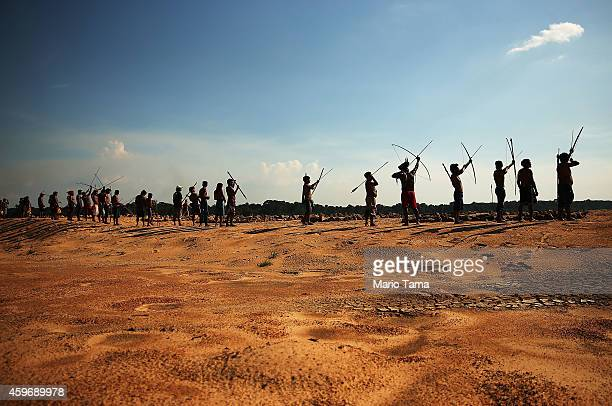 Members of the Munduruku indigenous tribe prepare to protest by symbolically aiming arrows on the banks of the Tapajos River in opposition to plans...