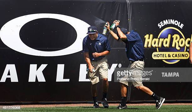 Members of the New York Yankees ground crew combat a swarm of bees that delayed the a spring training game vs the Boston Red Sox in the third inning...