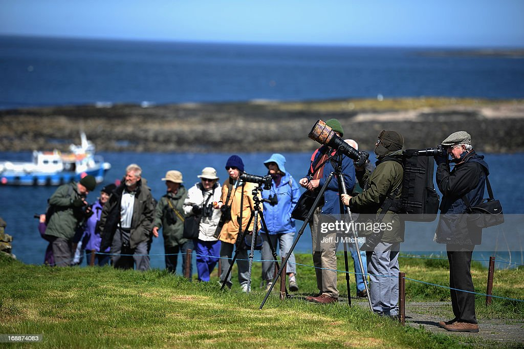 Members of the public take pictures as they visit the Farne Islands where Puffins are returning to their summer breeding grounds on May 16, 2013 in the Farne Islands, England. A census is carried out every five years with the last one in 2008 recording 36,500 pairs of puffins. The Farne Islands, offer good protection for the birds to nest, providing excellent sources of food, and few ground predators, despite this rangers fear that the extreme winter could impact on breeding numbers.
