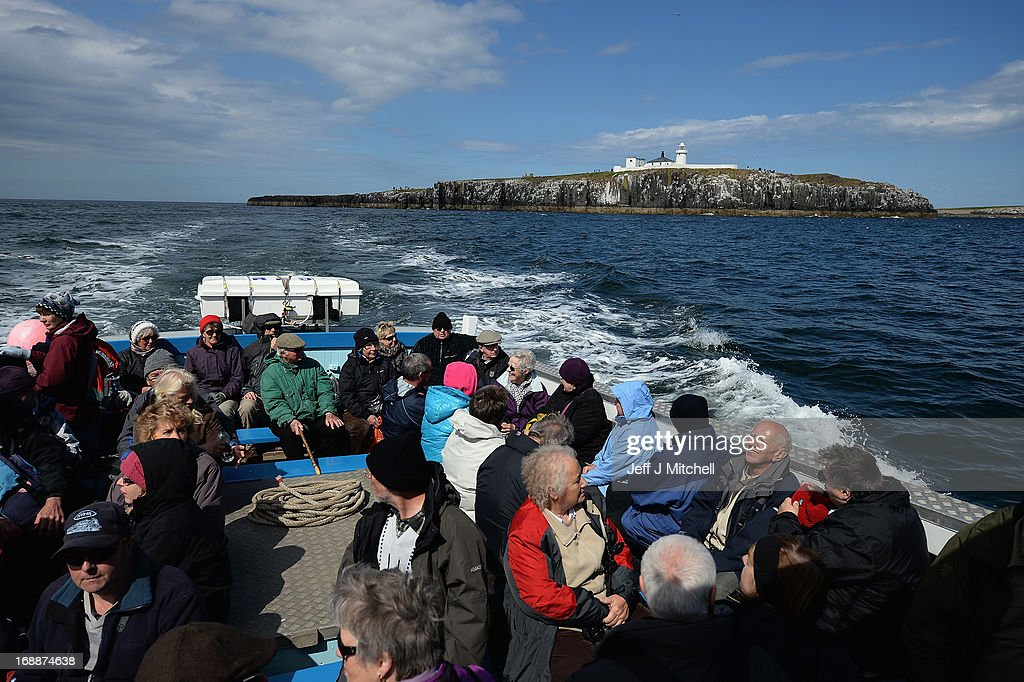 Members of the public travel by boat to the Farne Islands where Puffins are returning to their summer breeding grounds on May 16 2013 in the Farne...