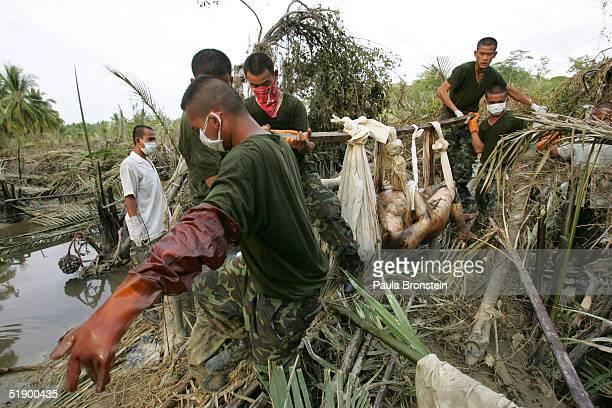 Members of the Thai military carry the female body of a foreigner from a nearby swamp where 20 bodies of foreign tourists staying at the Theptharo...