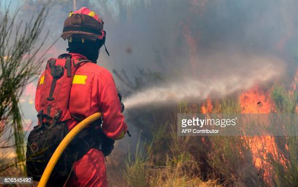 Members of the UME fight a wildfire in Vilardevos northwestern Spain on August 4 2017 / AFP PHOTO / MIGUEL RIOPA