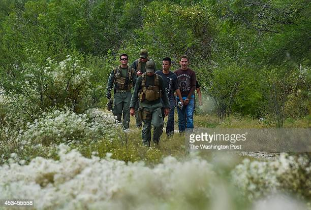 Members of the US Border Patrol detain several illegal immigrants on a Brooks County ranch on July 24 2014 in Falfurrias TX The Brooks County...