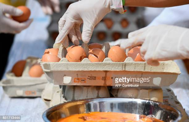 Members of the World Brotherhood of the Huge Omelet crack eggs to create a 6500 egg omelet within a 4 metre diameter frying pan on August 15 2017 in...