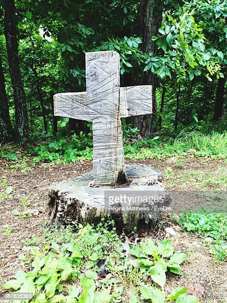 Memorial In Forest