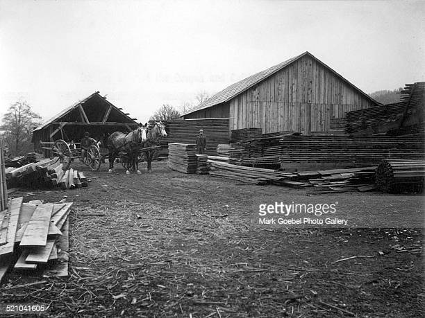 Men and horse carriage at lumberyard late 1880s