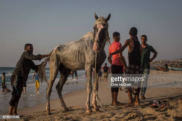 Men are seen cleaning their horse on the beach on July 21 2017 in Gaza City Gaza For the past ten years Gaza residents have lived with constant power...