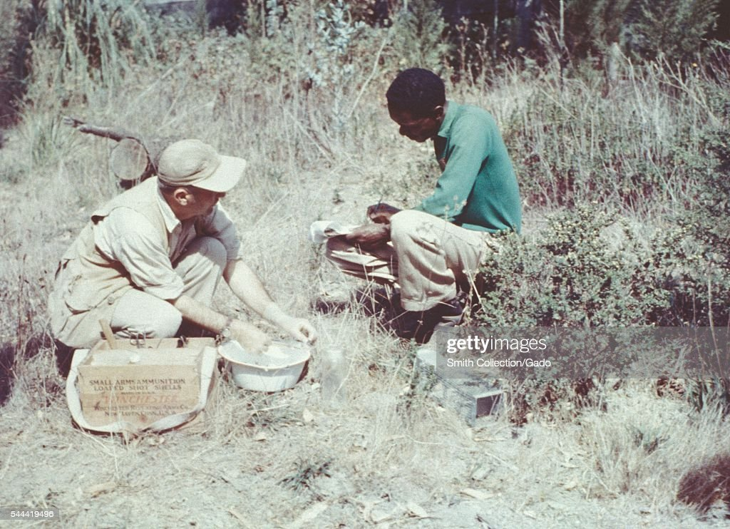 Men conducting a plague study in the San Francisco area by capturing vectorcarrying rodents 1961 Field workers are collecting trapped rodents in...