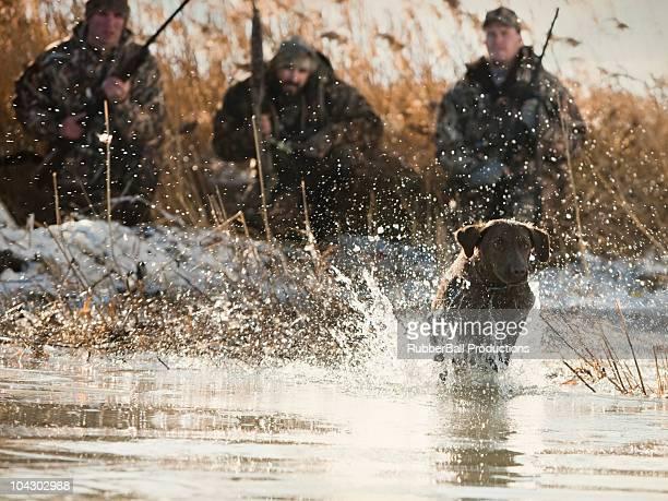 men duck hunting with their labrador retriever