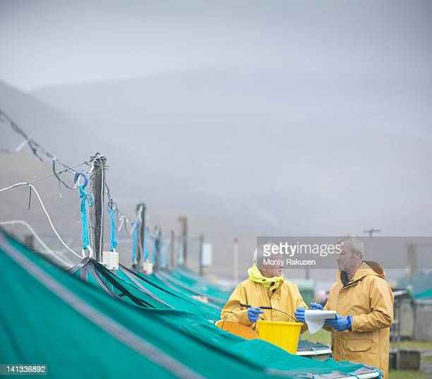 Men feeding fish and stock checking on Scottish salmon hatchery