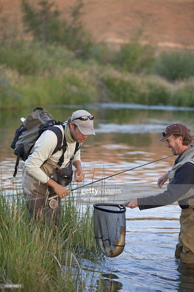 Men flyfishing : Stock Photo