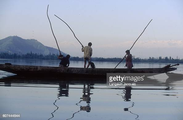 Men from Srinagar India gather seaweed from Dal Lake to use as a garden fertilizer