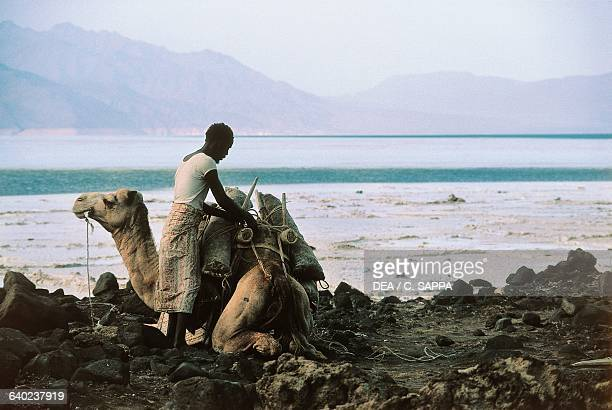 Men loading up a camel with bags of salt Lake Assal Djibouti