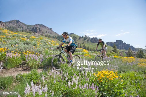 Men mt biking : Stock-Foto
