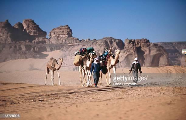 Men of the Tuareg tribe leading camels, Akakus (Acacus) National Park, Sahara Desert.
