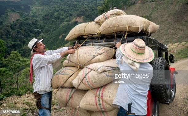 Men transporting sacks of coffee in a car