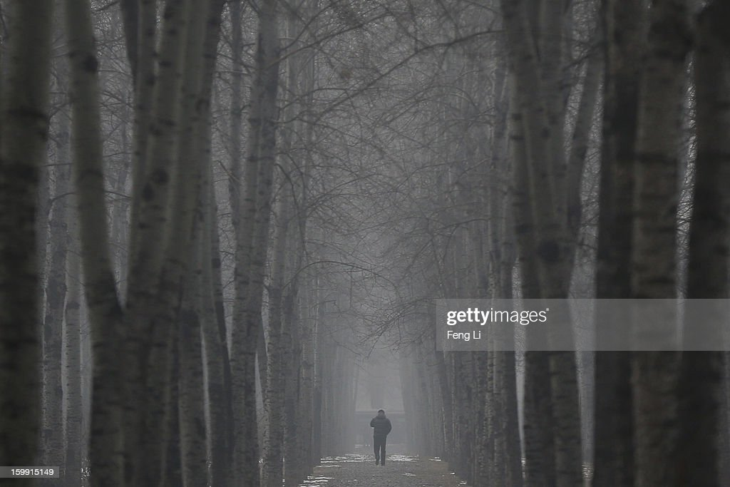 A men wearing the mask walks under the trees during severe pollution on January 23, 2013 in Beijing, China. The air quality in Beijing on Wednesday hit serious levels again, as smog blanketed the city.