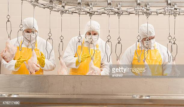 Men working at a chicken factory